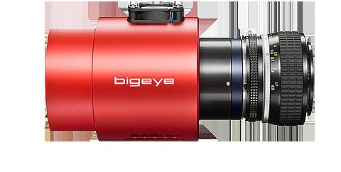 Bigeye P P-1100