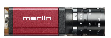 Marlin F-080